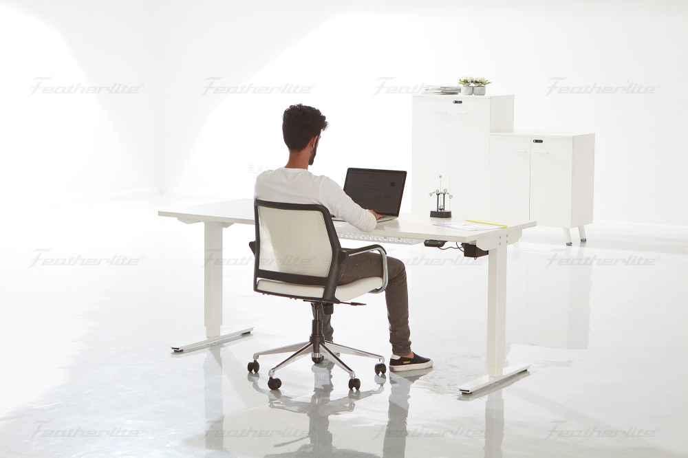 office furniture - Ergonomic height adjustable desk